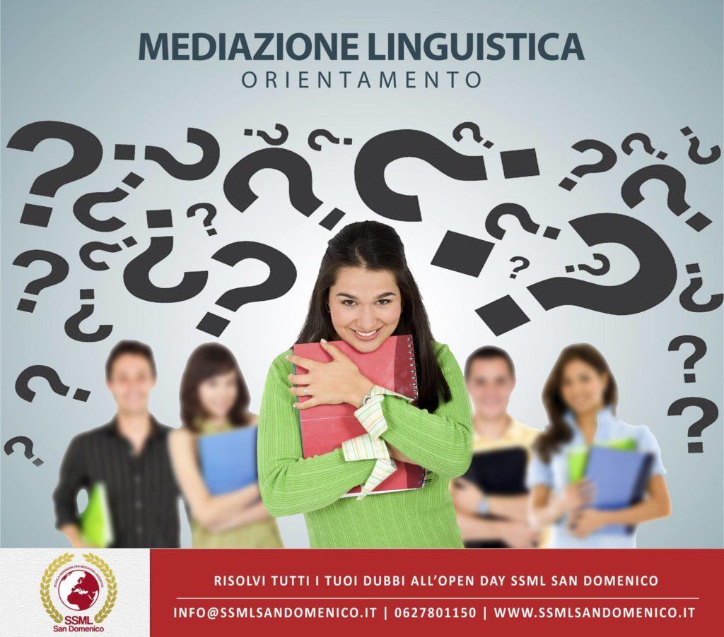 la figura del mediatore linguistico